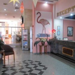 Flamingo Beach Hotel Lobby